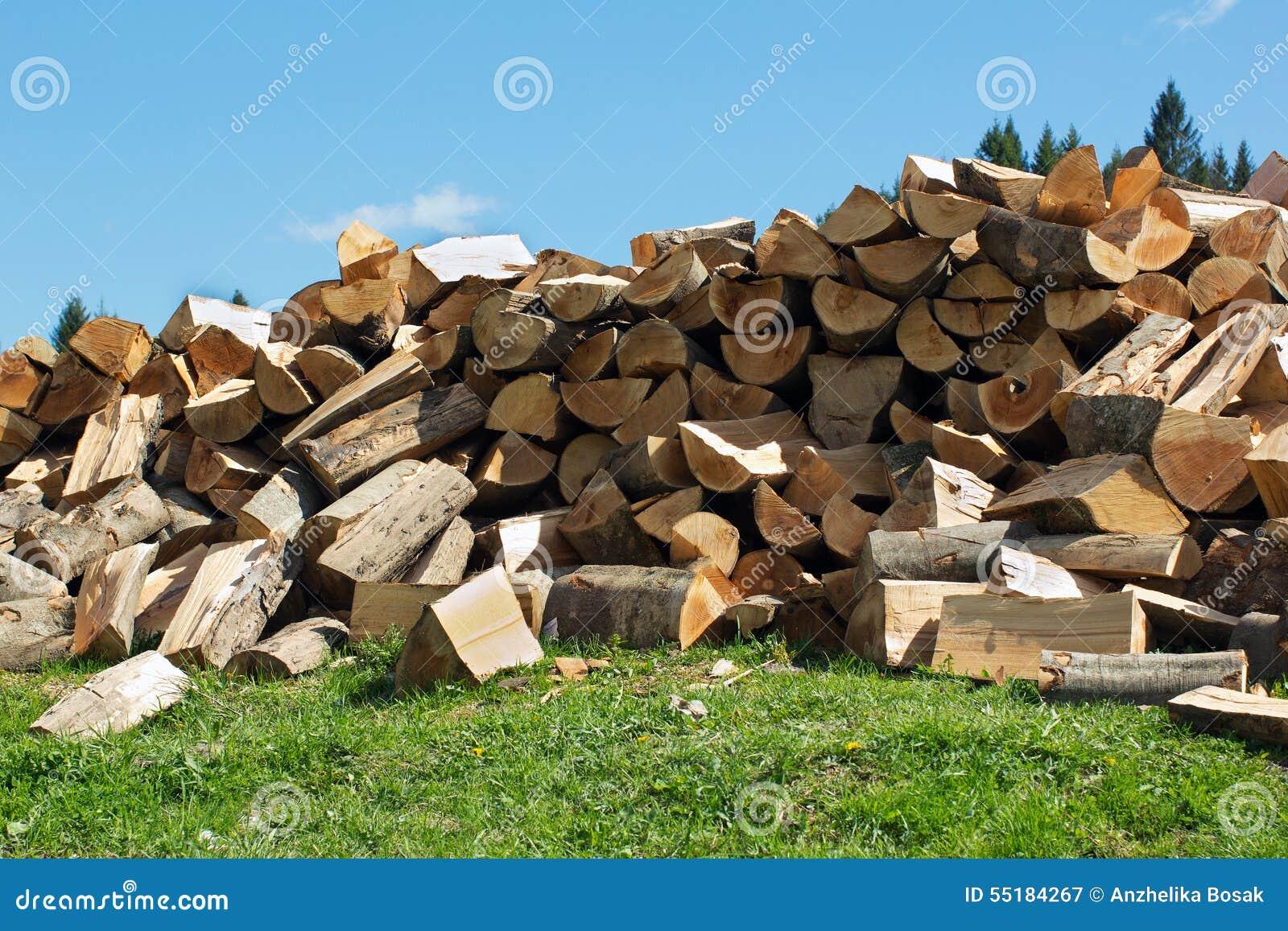 Pila del disegno sezionale di legna da ardere sull 39 erba for Legna da ardere prezzi