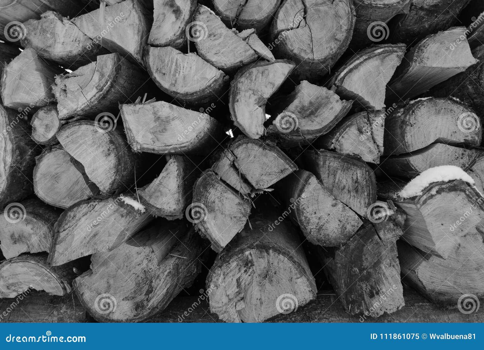 Pila di giorni di inverno di legni