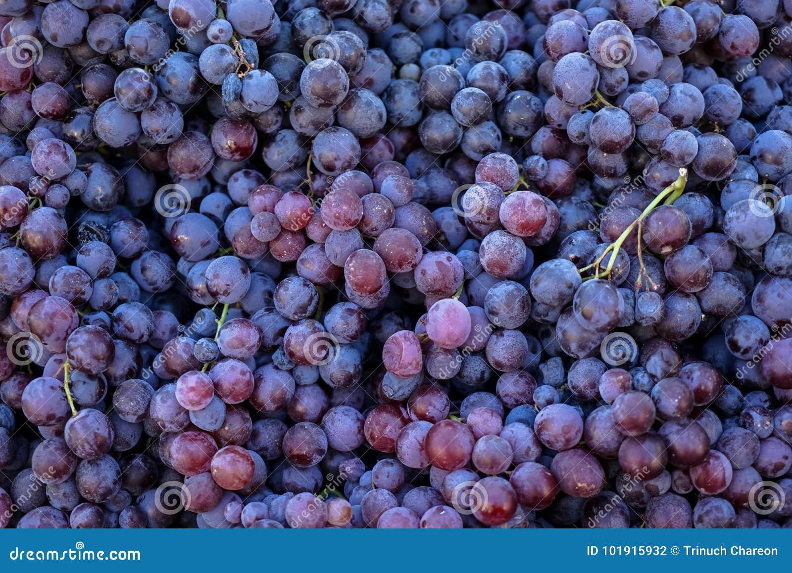 Pilas de fondo sin semillas jugoso fresco delicioso de las uvas rojas en mercado de la fruta de la ciudad