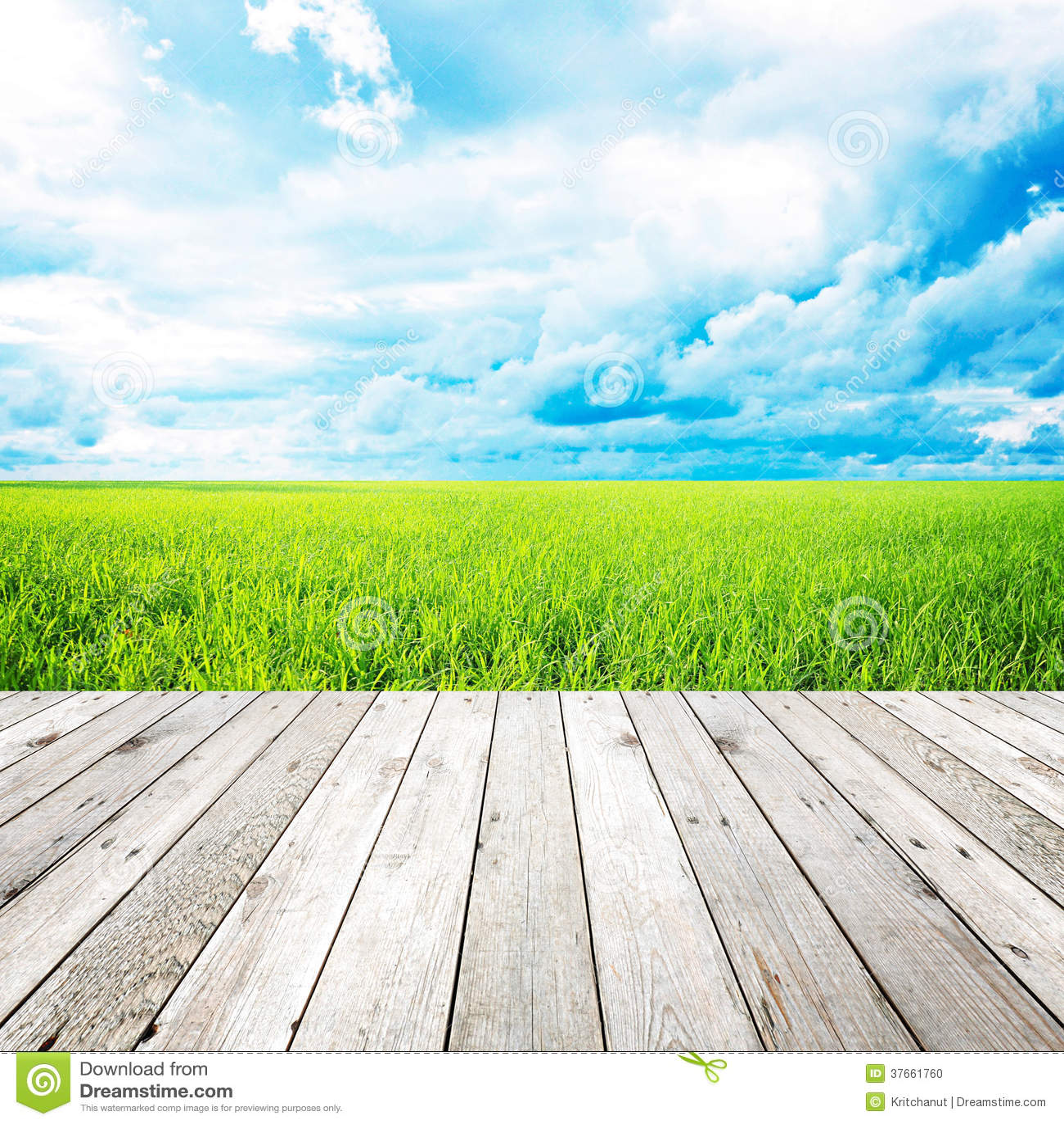 Pilastro di legno con il campo di erba ed il fondo del cielo blu