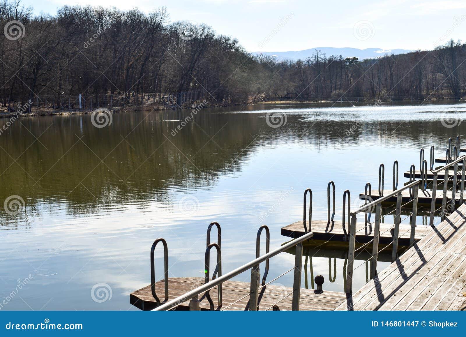 Pilastro di legno del molo del pontone per il porticciolo di attracco della barca sul lago del parco