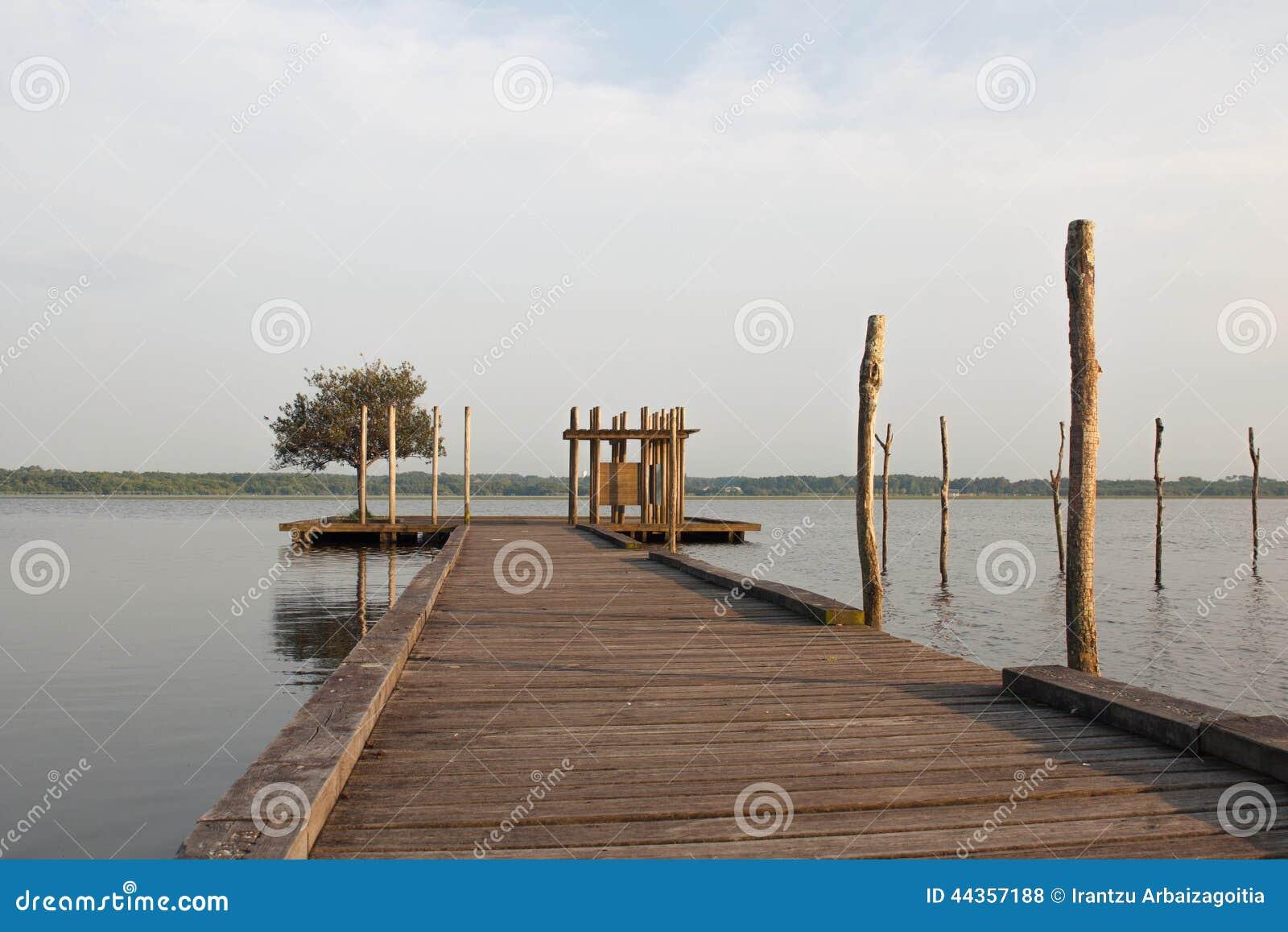 Pilastro ed albero di legno nel lago Soustons, Landes