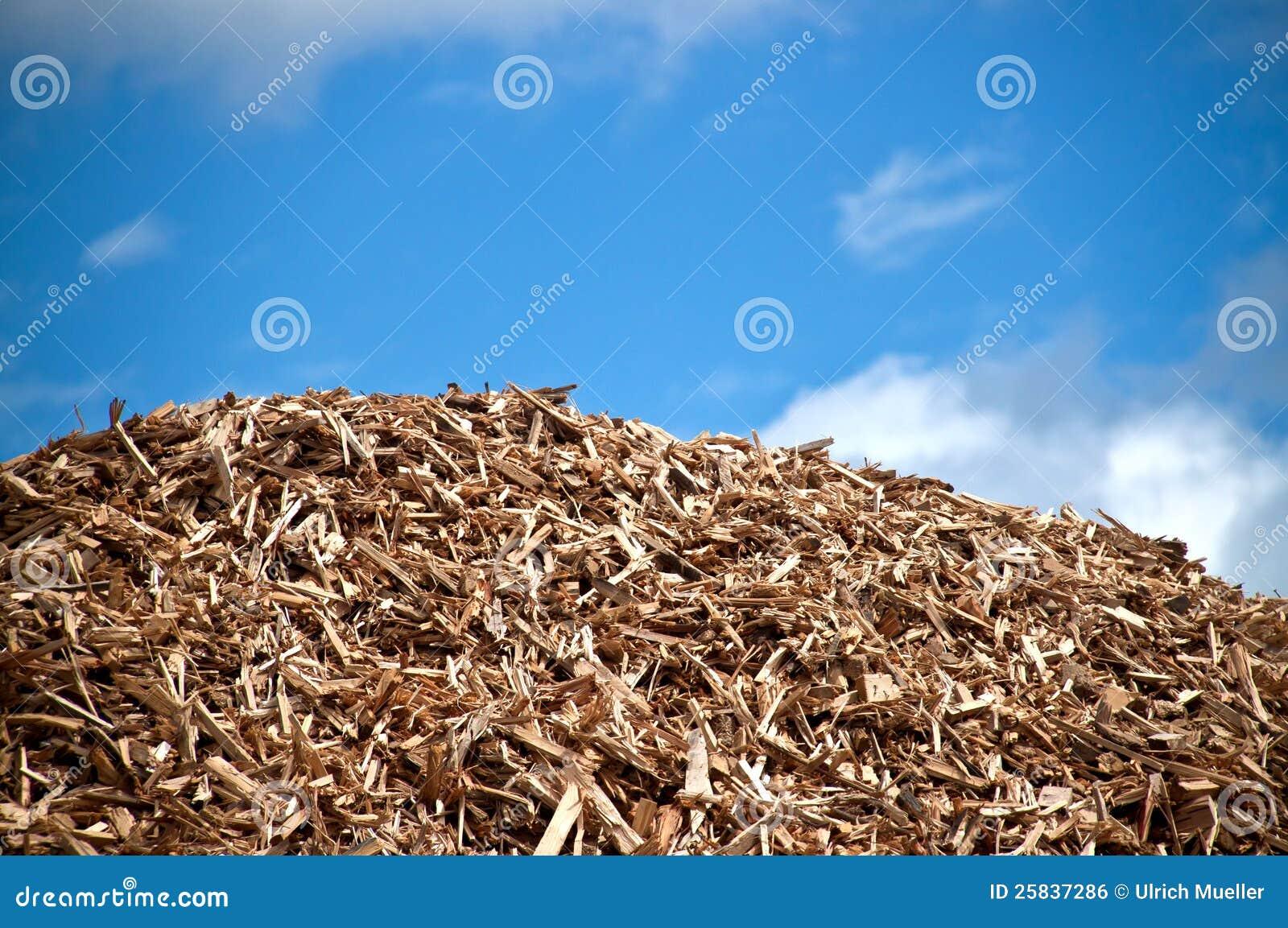 Pile of biomass