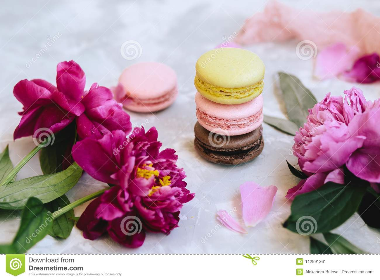 A pile of colorful delicious macaroon closeup with pink peony flowers, petals on a light background concrete