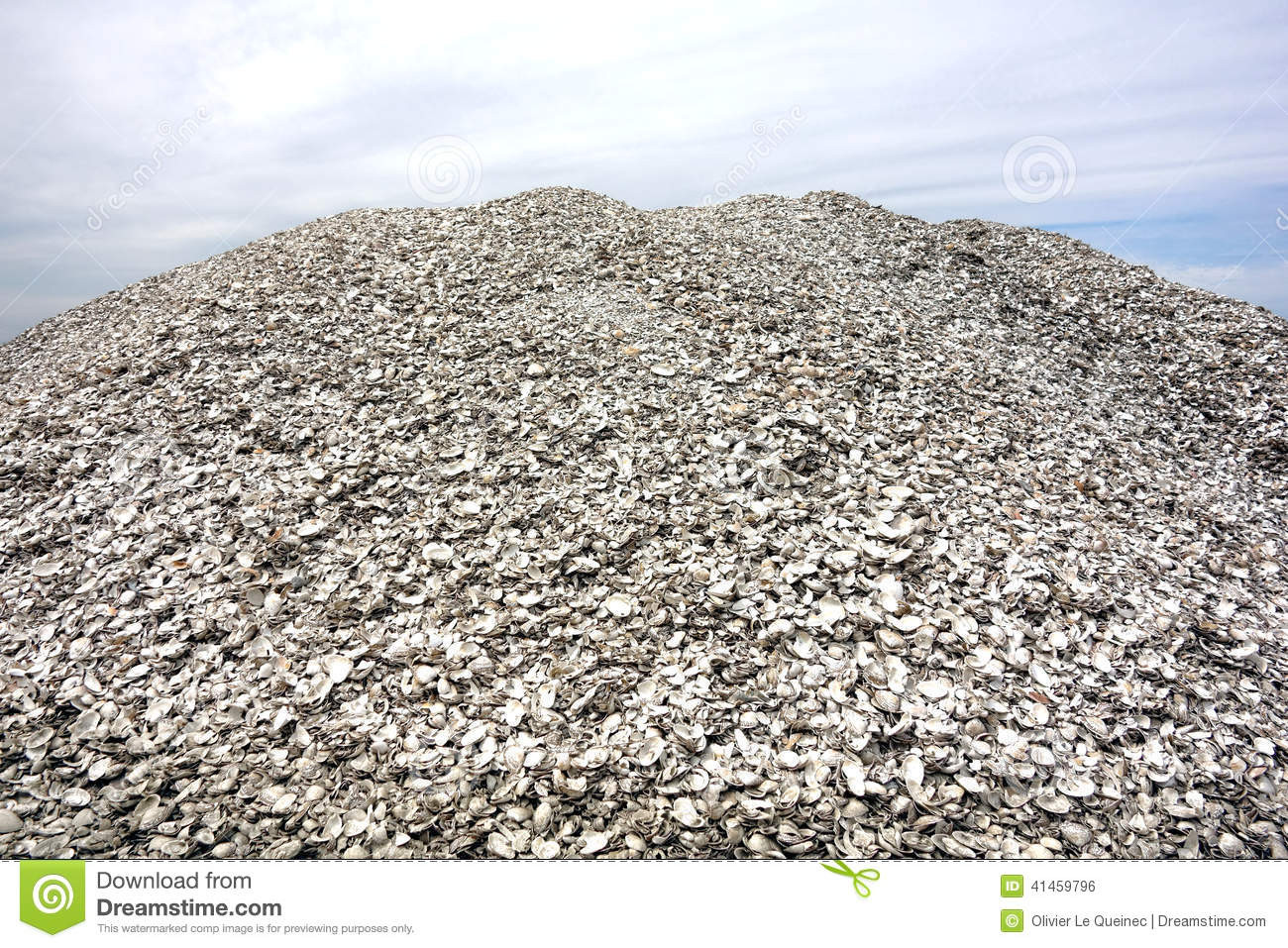 Pile Of Crushed Oyster Shells And Clamshells Stock Photo