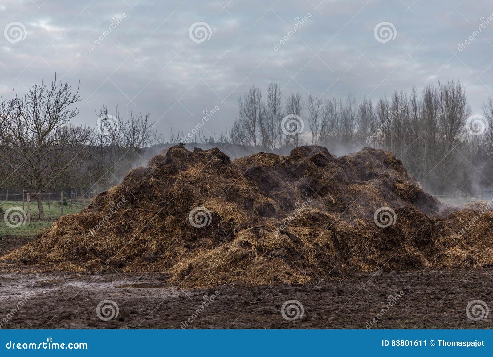 Pile d engrais de cheval