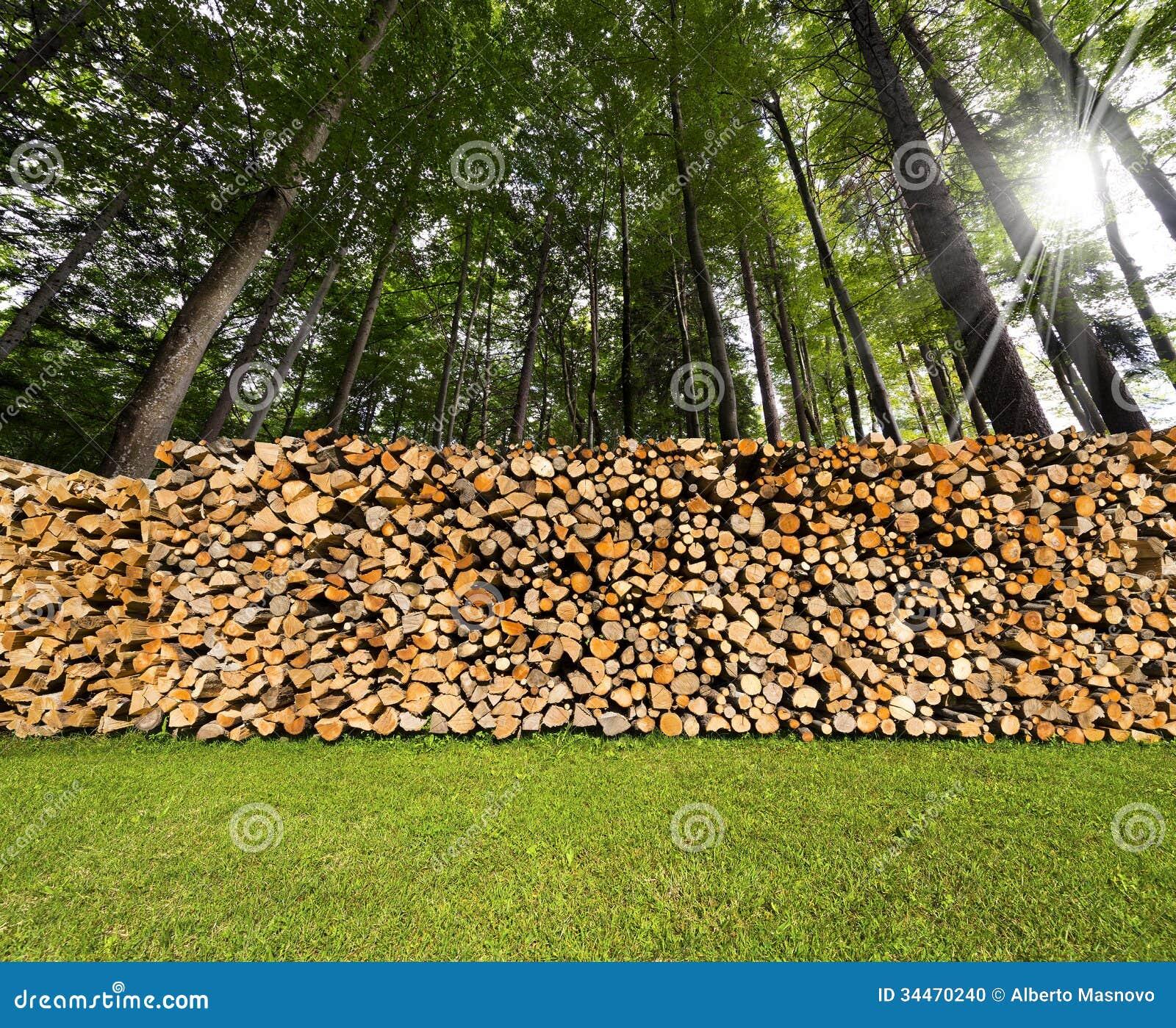 Pile De Bois De Chauffage Coupé Dans Les Bois Photo stock Image 34470240 # Coupe Bois De Chauffage