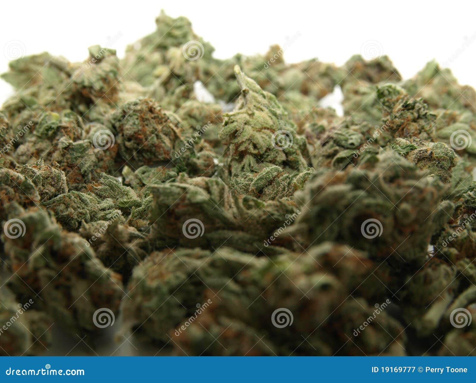 Pile de cannabis