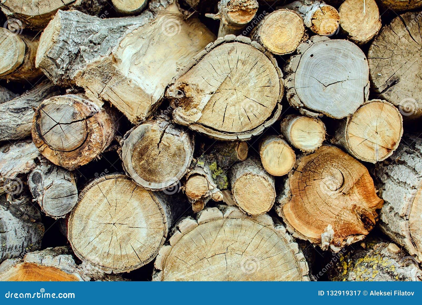 Pile de fond en bois naturel de rondins