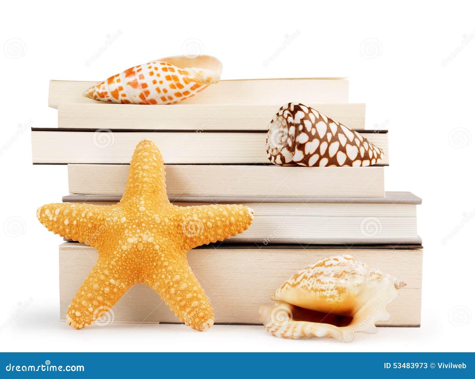 Pile de livres et de coquillages
