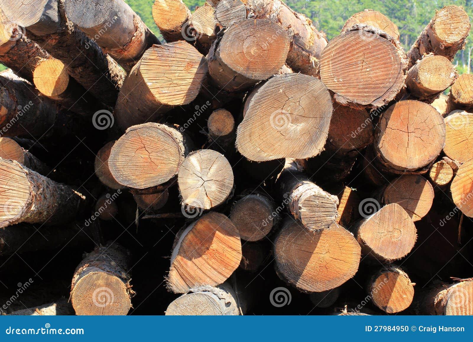 Pile de logs