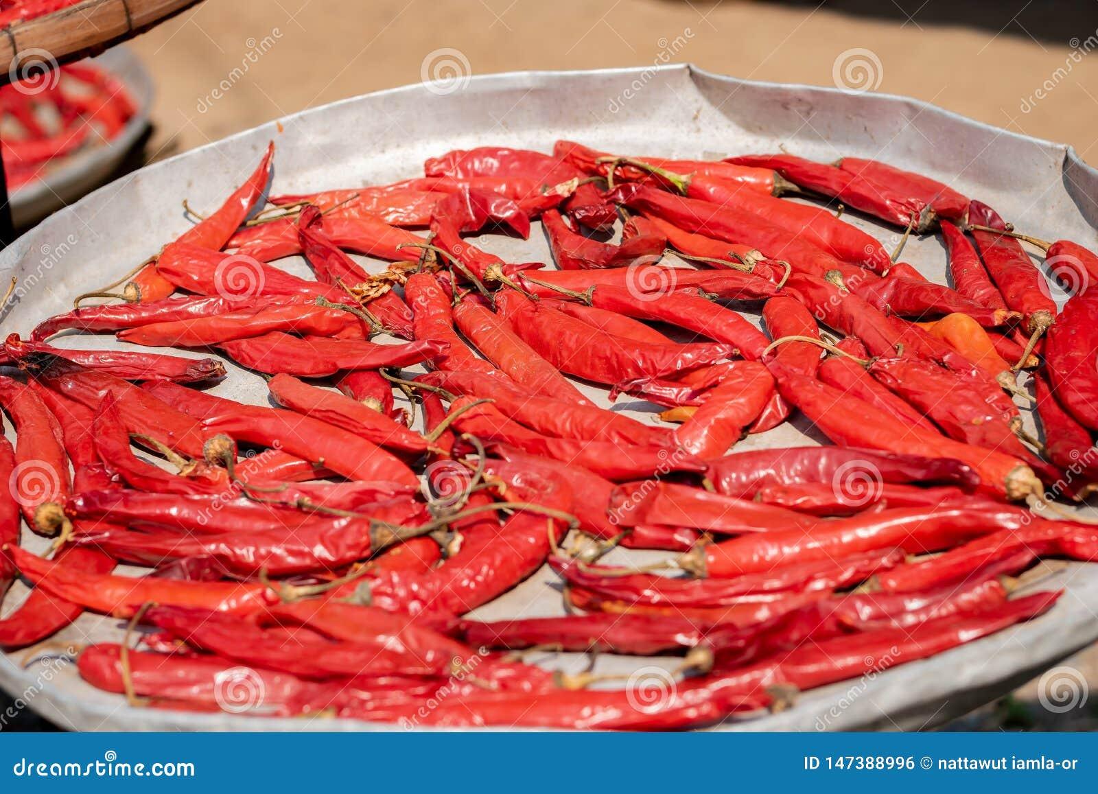 Pile des poivrons de piment d un rouge ardent secs