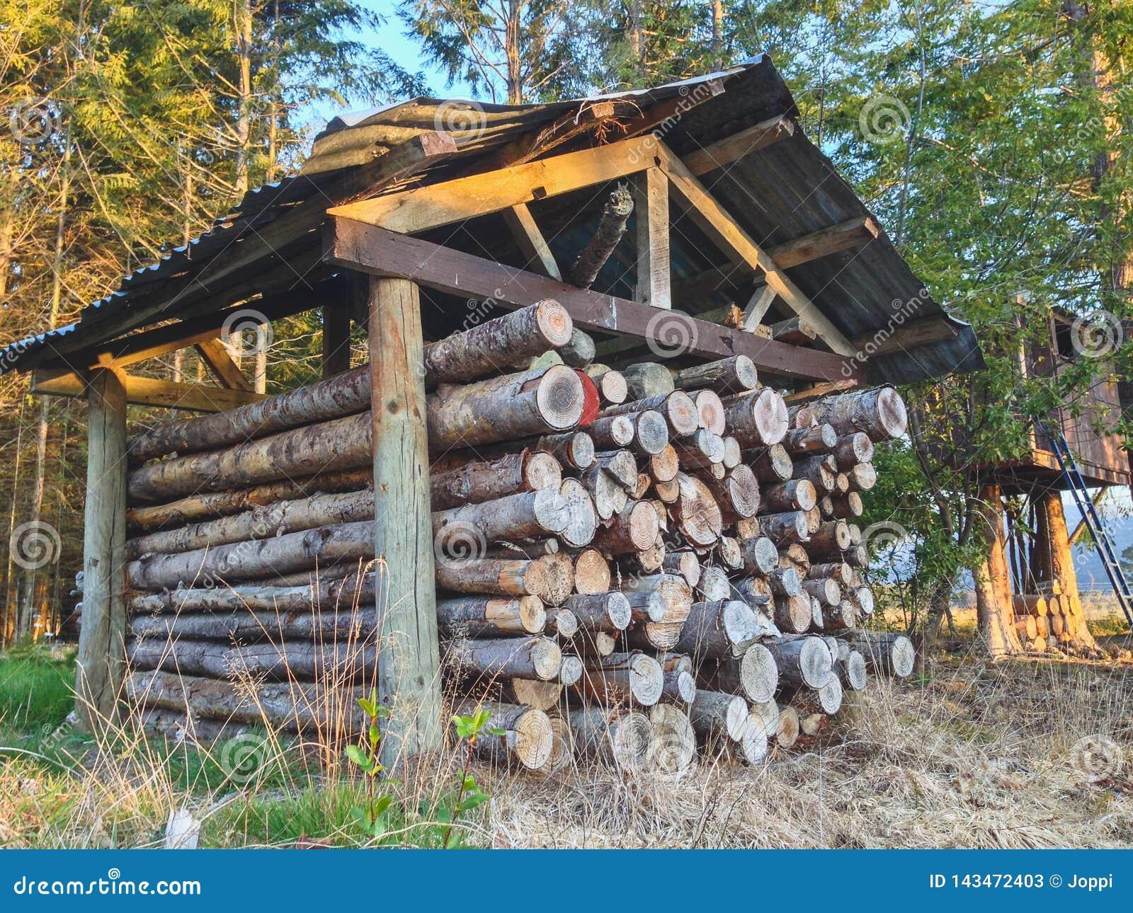 Pile des rondins en bois cutted du feu sous l abri au Nouvelle-Zélande