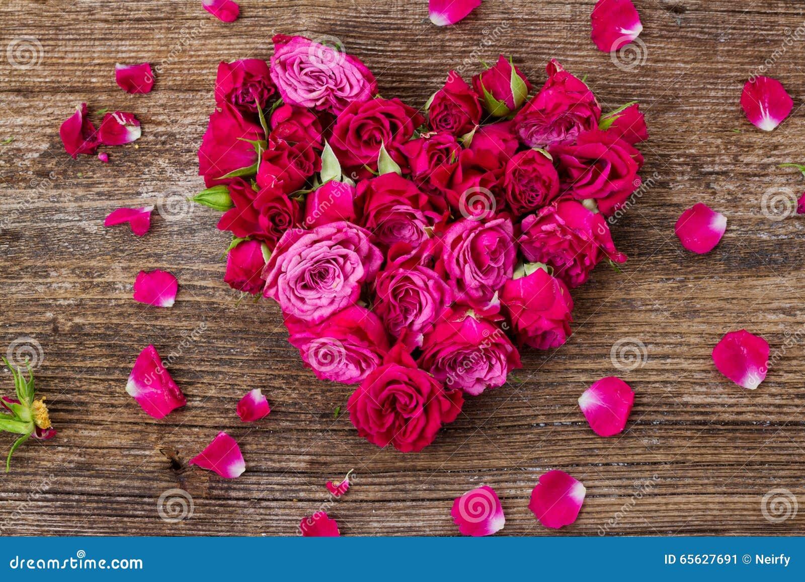 Pile des roses mauve