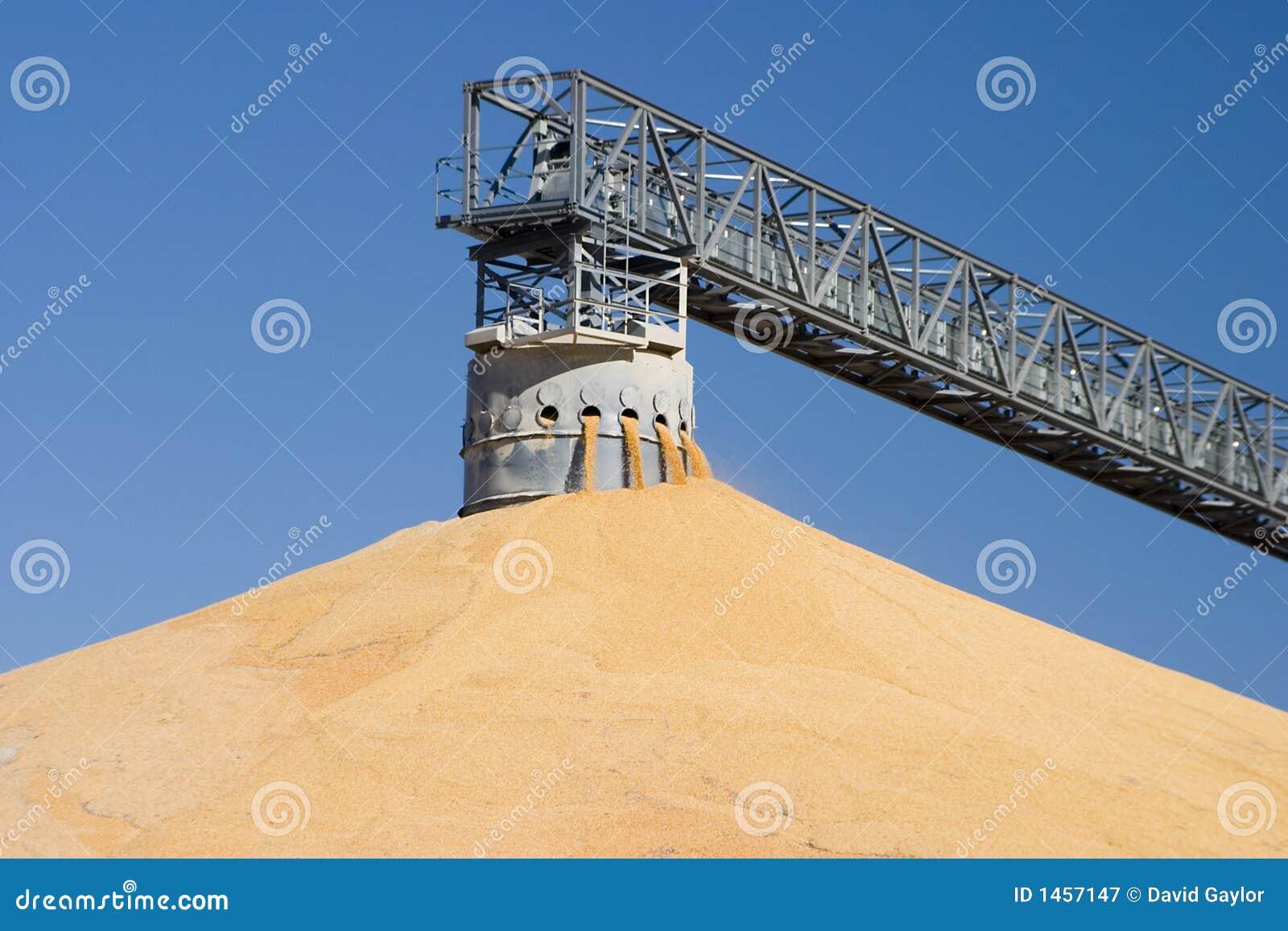 Pile en surplus de moisson de maïs