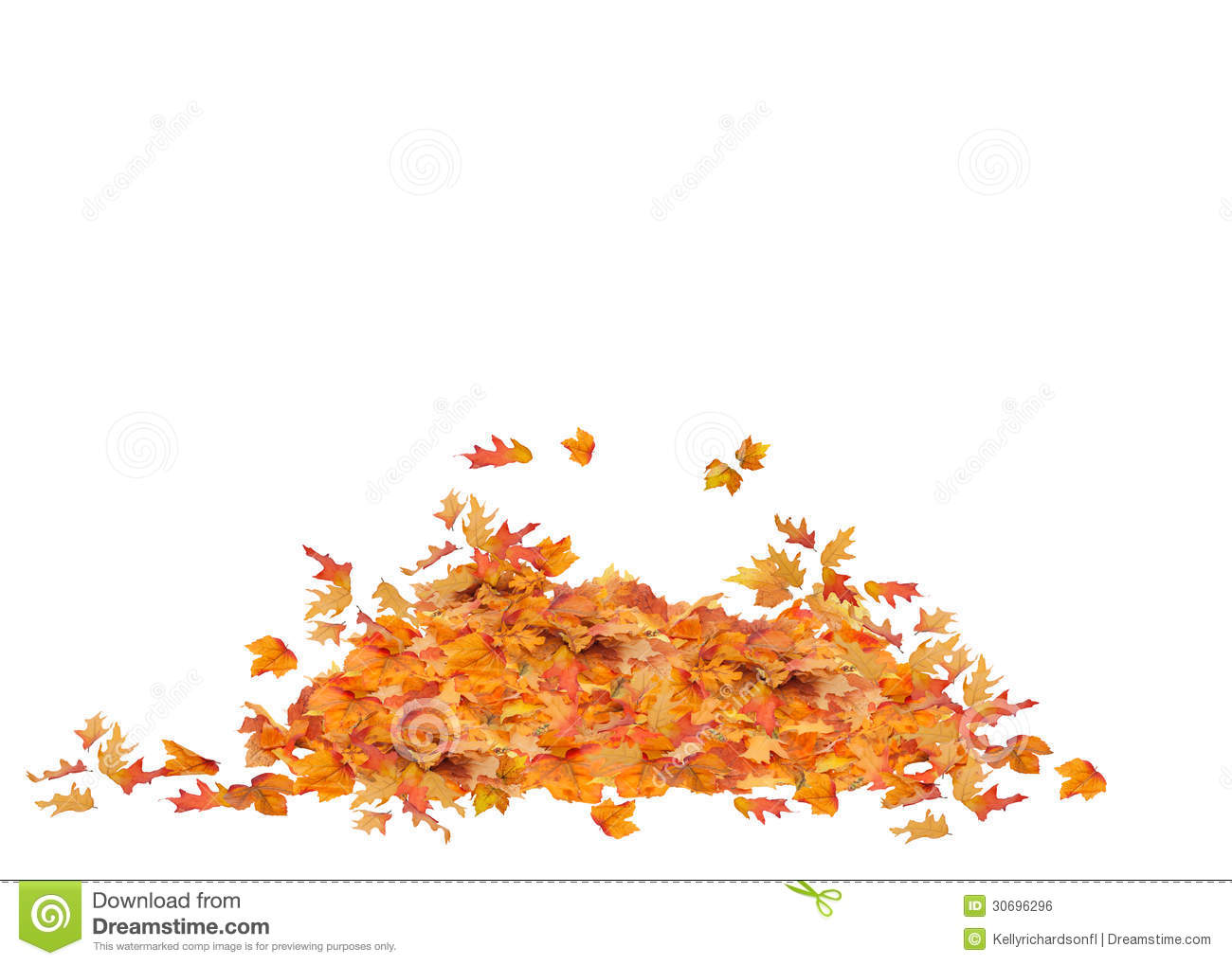 Pile Of Fall Leaves Isolated Stock Photo Image Of Pattern Autumn 30696296