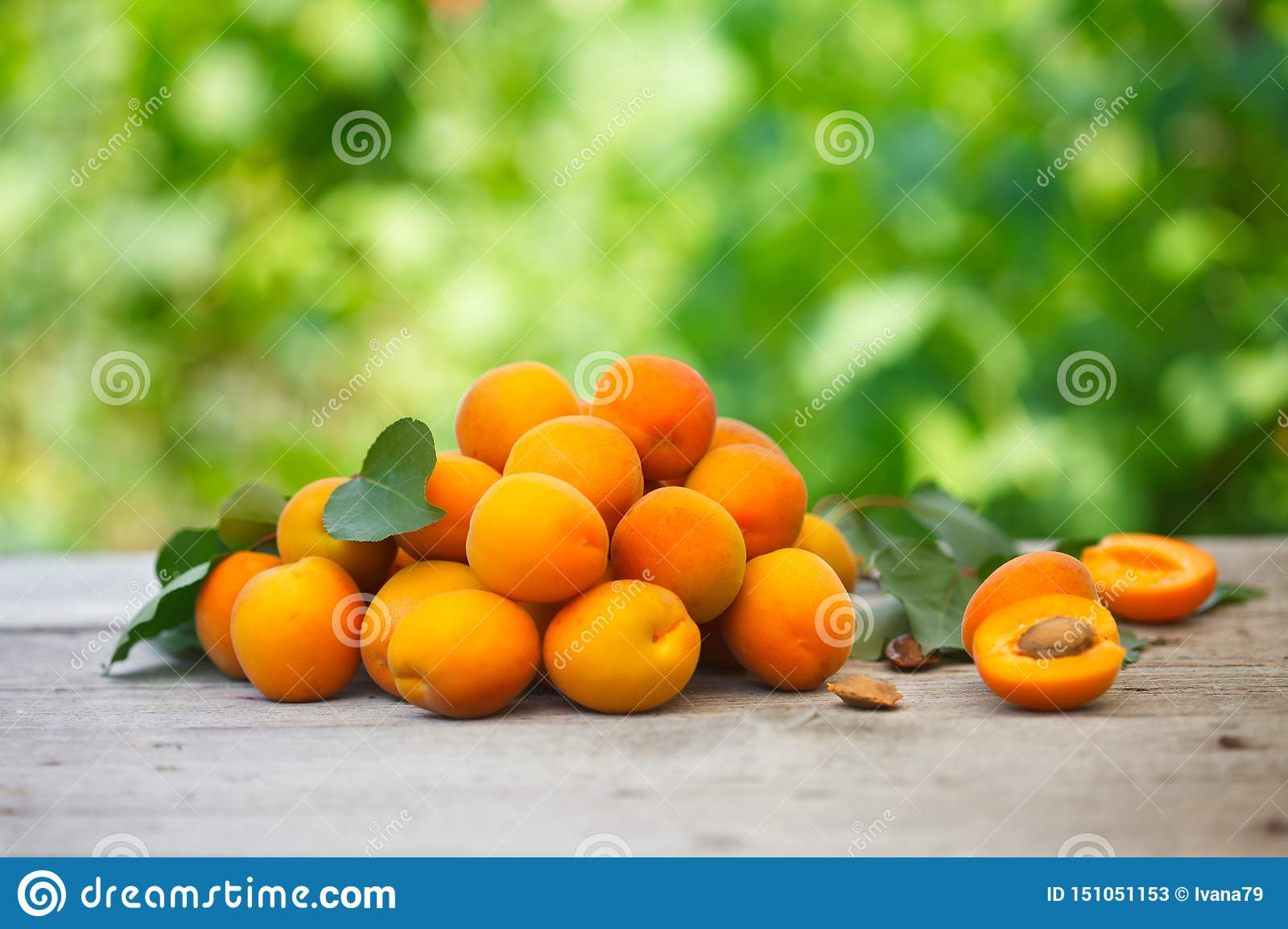 Pile of fresh apricots with aprcicot leaves on old wooden table