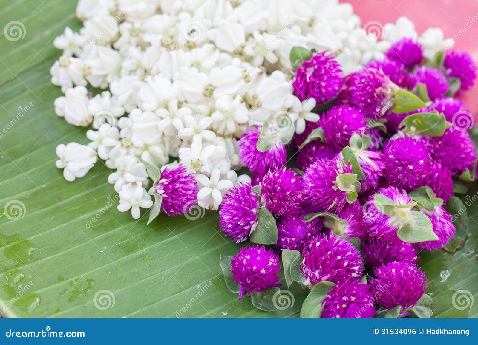 The pile of jasmine and globe amaranth flower stock photo image of the pile of jasmine and globe amaranth flower izmirmasajfo