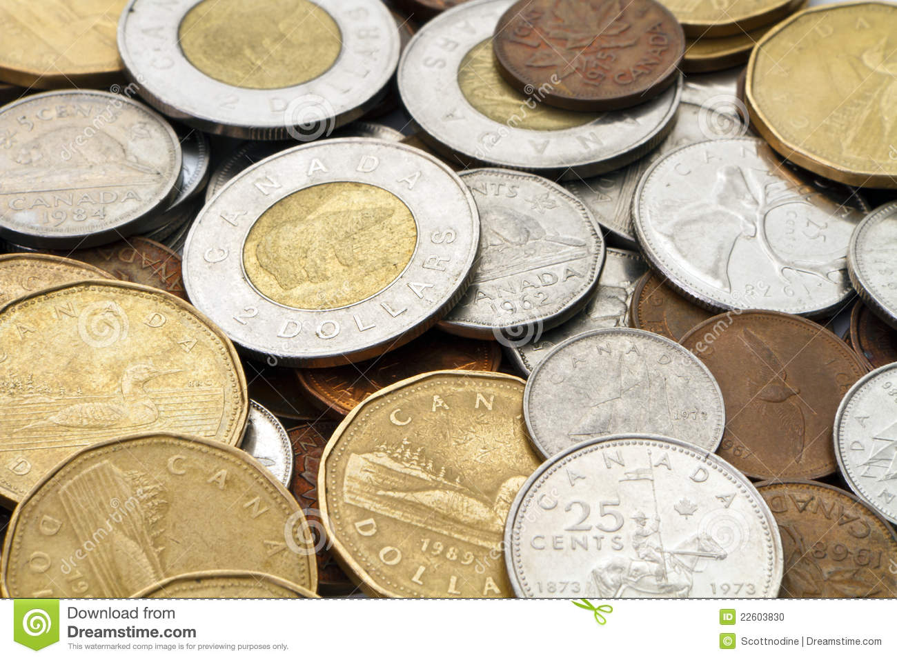Pile Of Modern Canadian Money Editorial Image Image