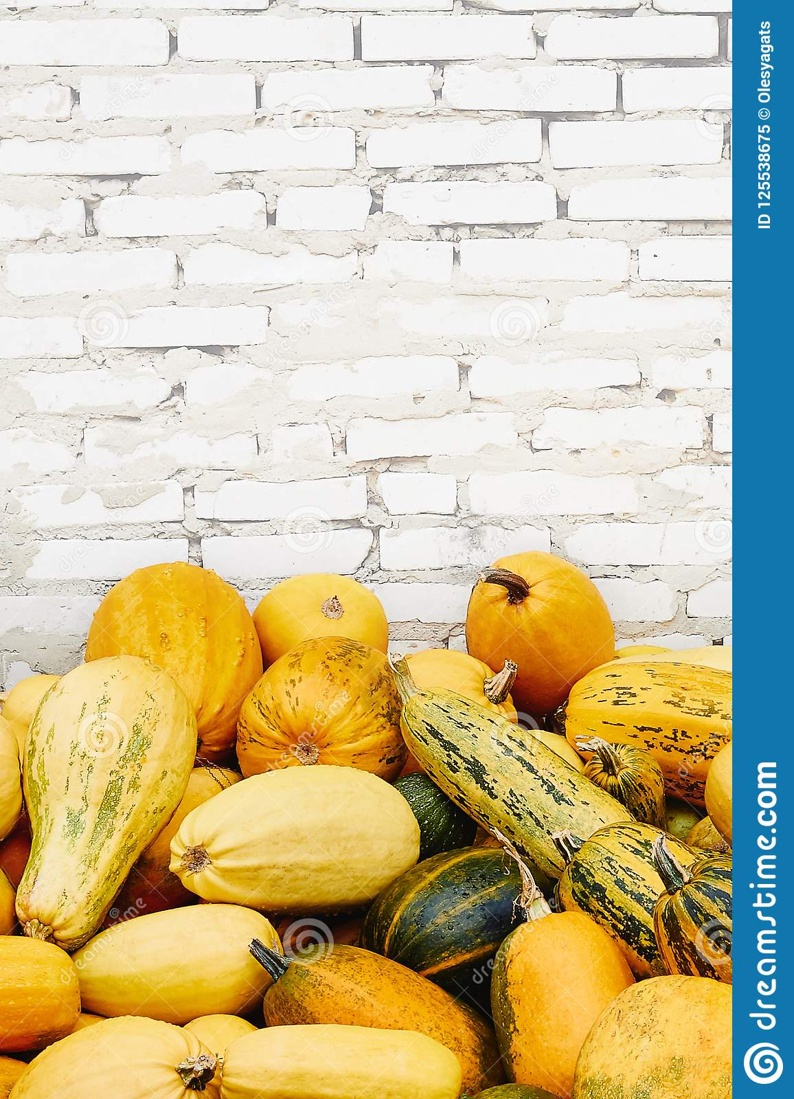 Pile of pumpkins over white brick background
