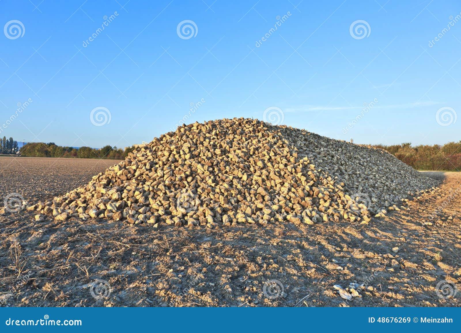 Pile Of Sugar B...