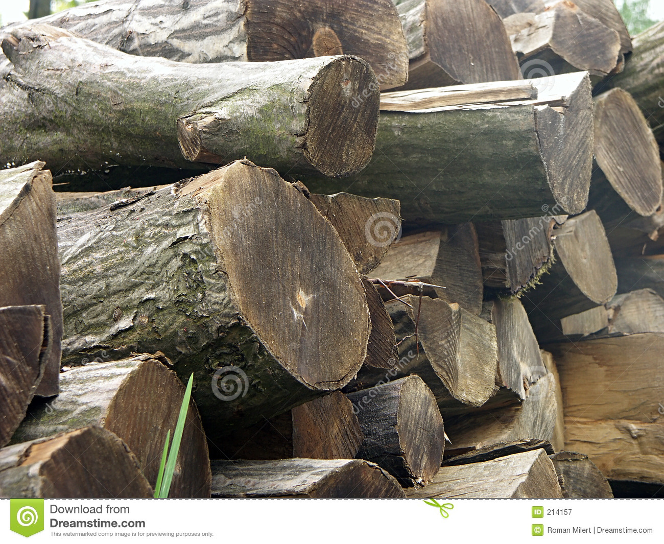 Pile Of Timber : Pile of timber royalty free stock photography image