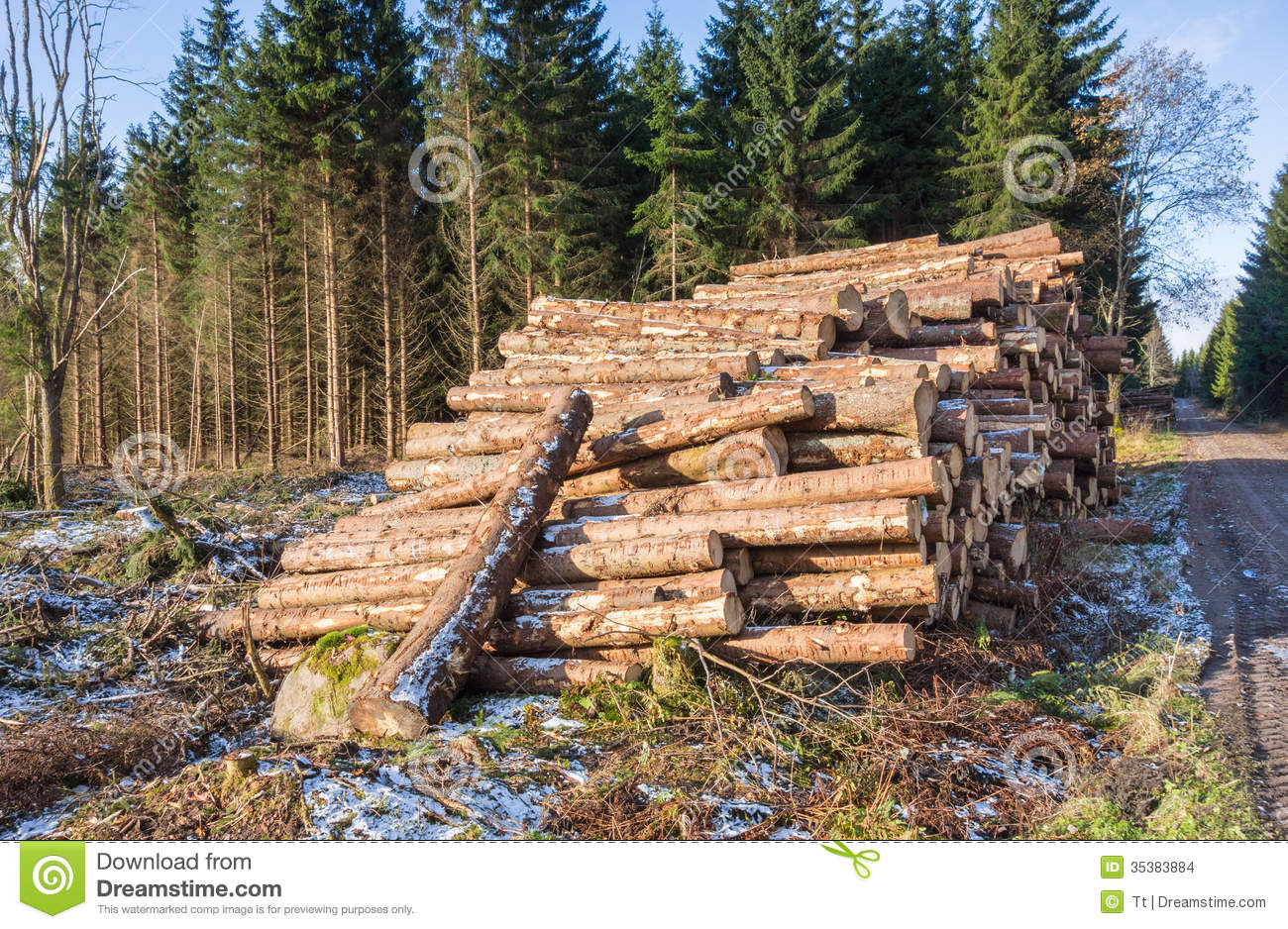 Pile Of Timber : Pile of timber stock images image
