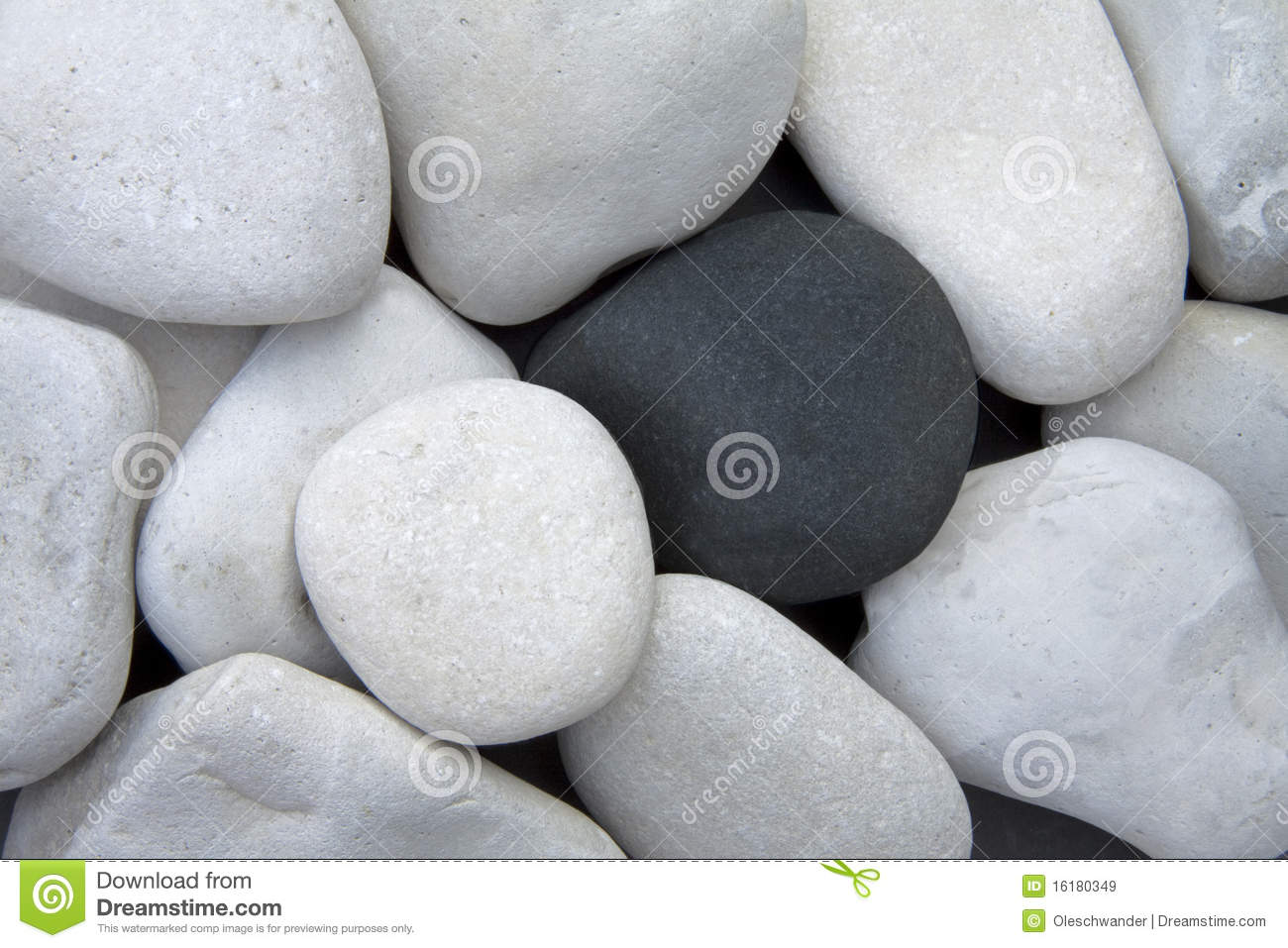 Close up of a pile of white stones with a single black stone between