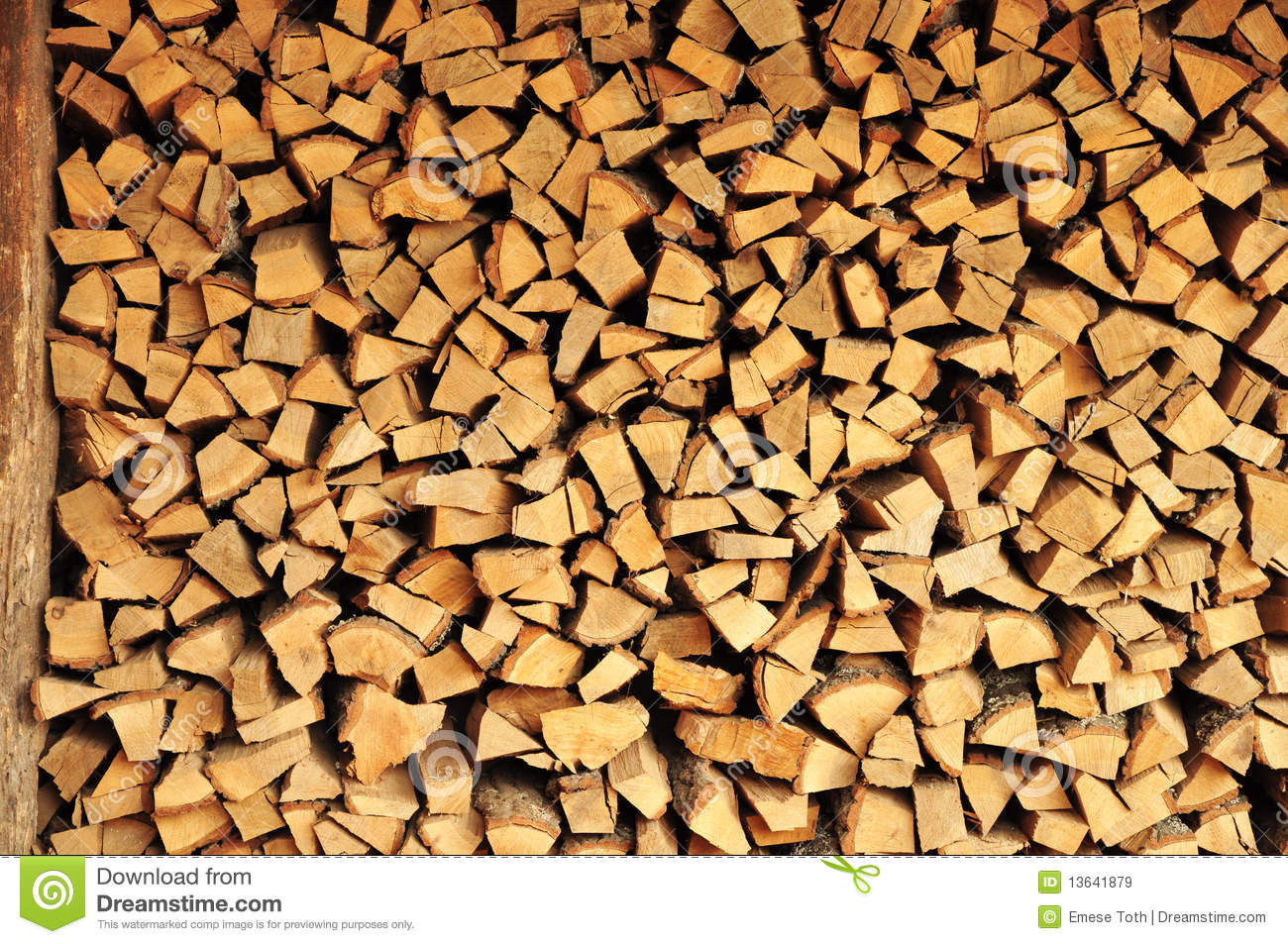 Pile of wood stock image forest chopped