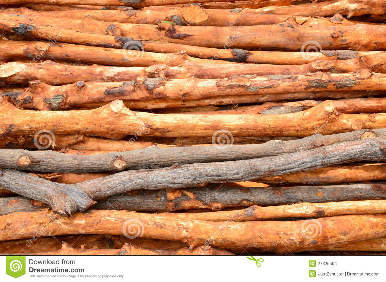 Pile of wood logs stock images image