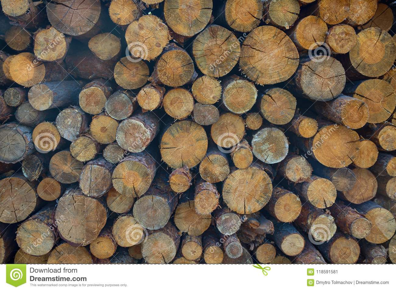 Download Pile Of Wood Logs Storage For Industry Stock Image   Image Of Logs,  Energy