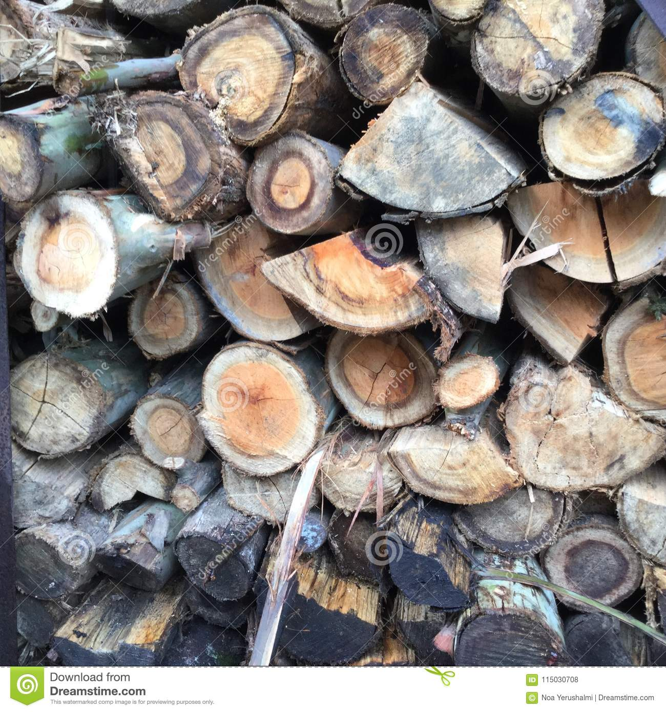 A pile of Wooden Cut Logs, stock photo  Image of leaving - 115030708
