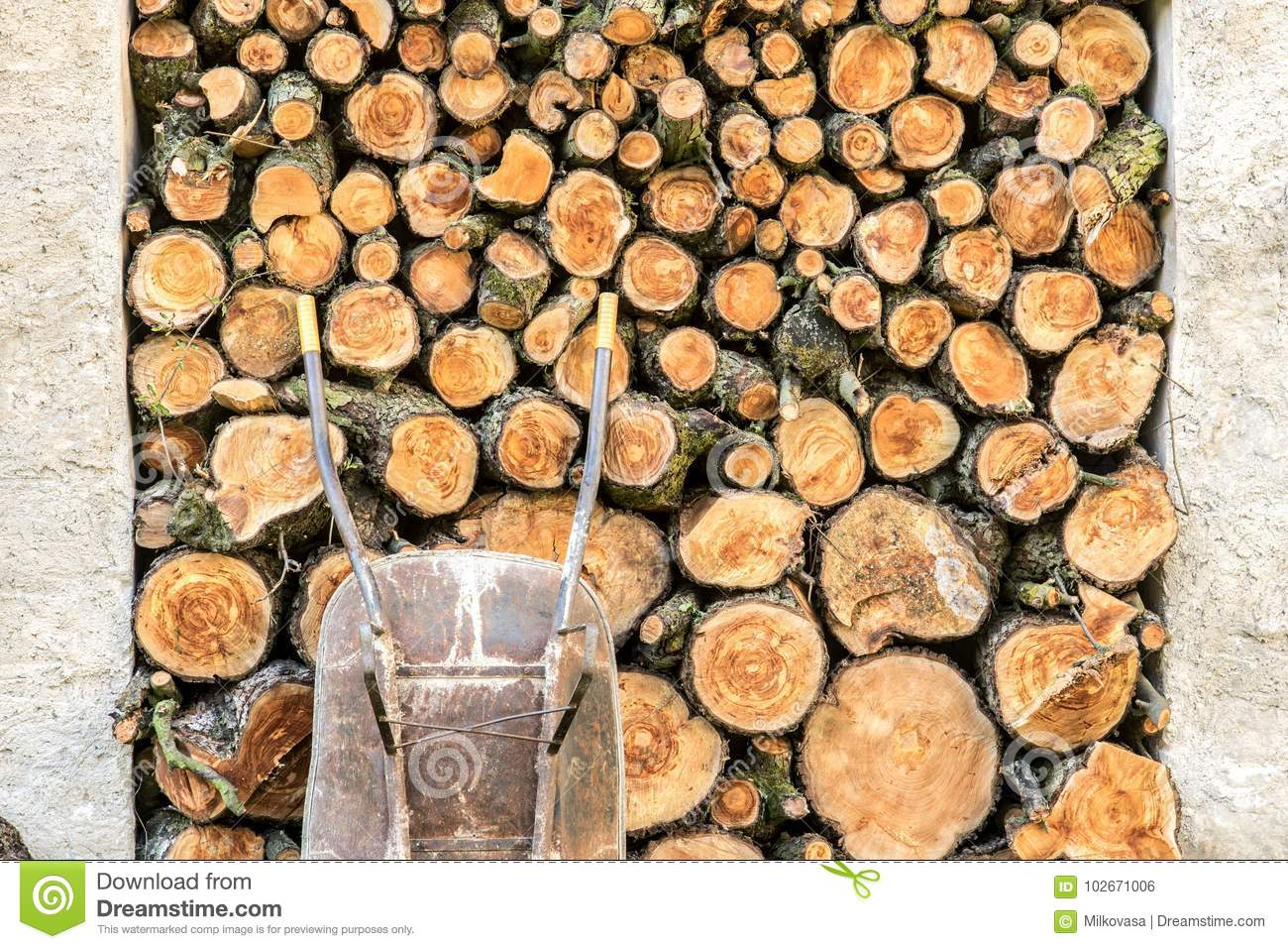 Heap Of Wood Logs Ready For Winter. Stack Of Chopped Firewood. A Pile Of  Woods In The House Storage. Raw Barked Wood Logs In A Storage Yard.