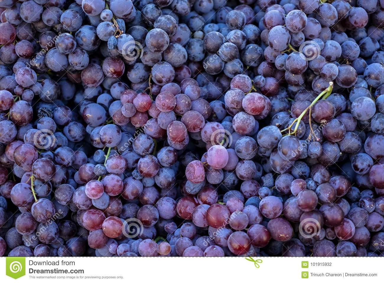 Piles of delicious fresh juicy seedless red grapes background in city fruit market