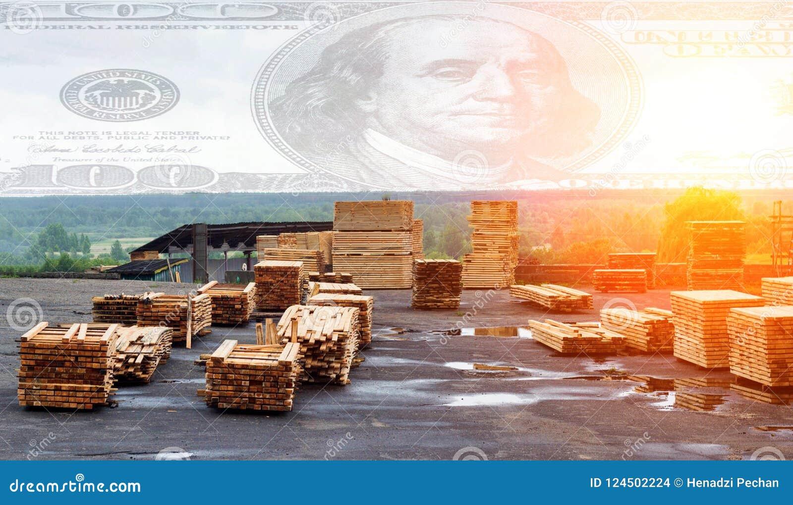 Piles des conseils en bois dans la scierie, conseils pour l exportation