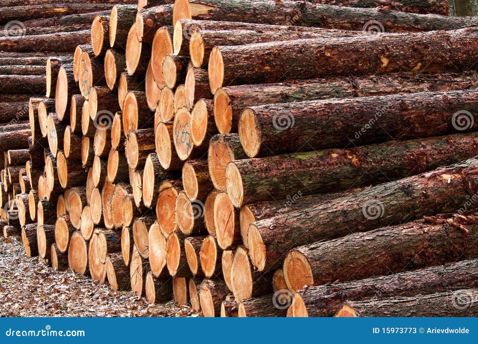 Piles en bois