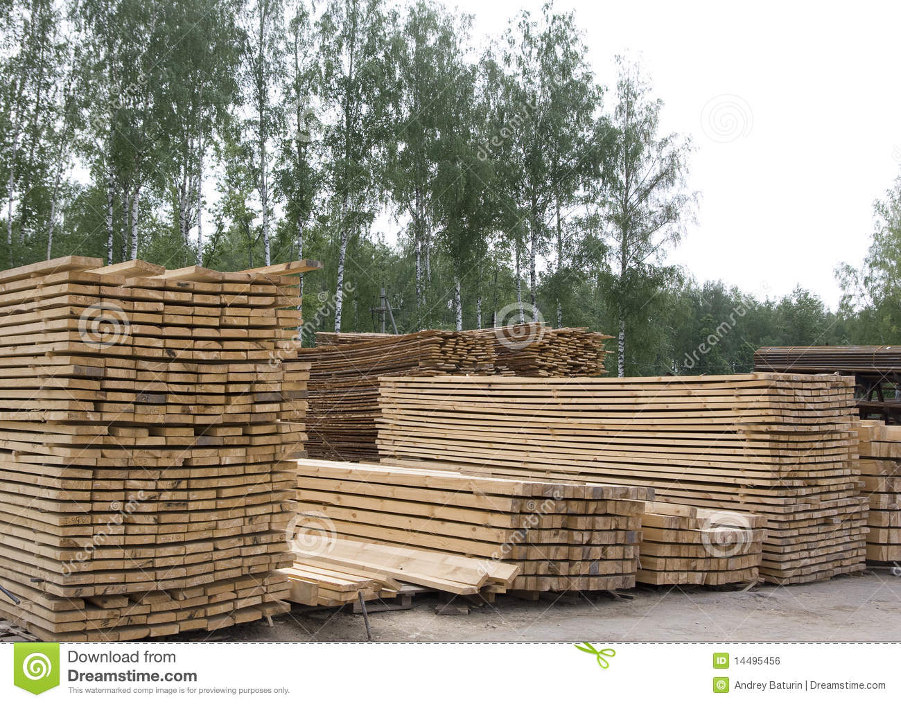 Piles of pine wood planks stock photo image tree