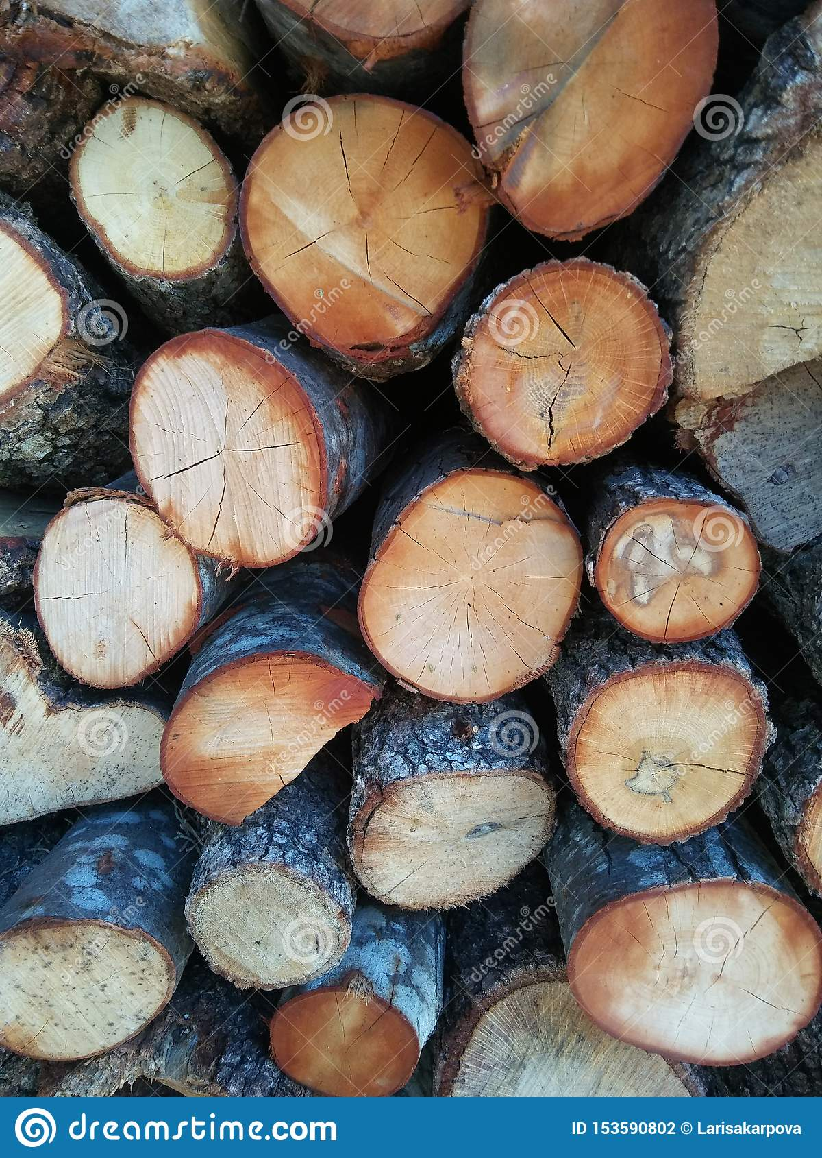 Pilha de lenha para fogão, lareira. Fundo Firewood. Textura de madeira