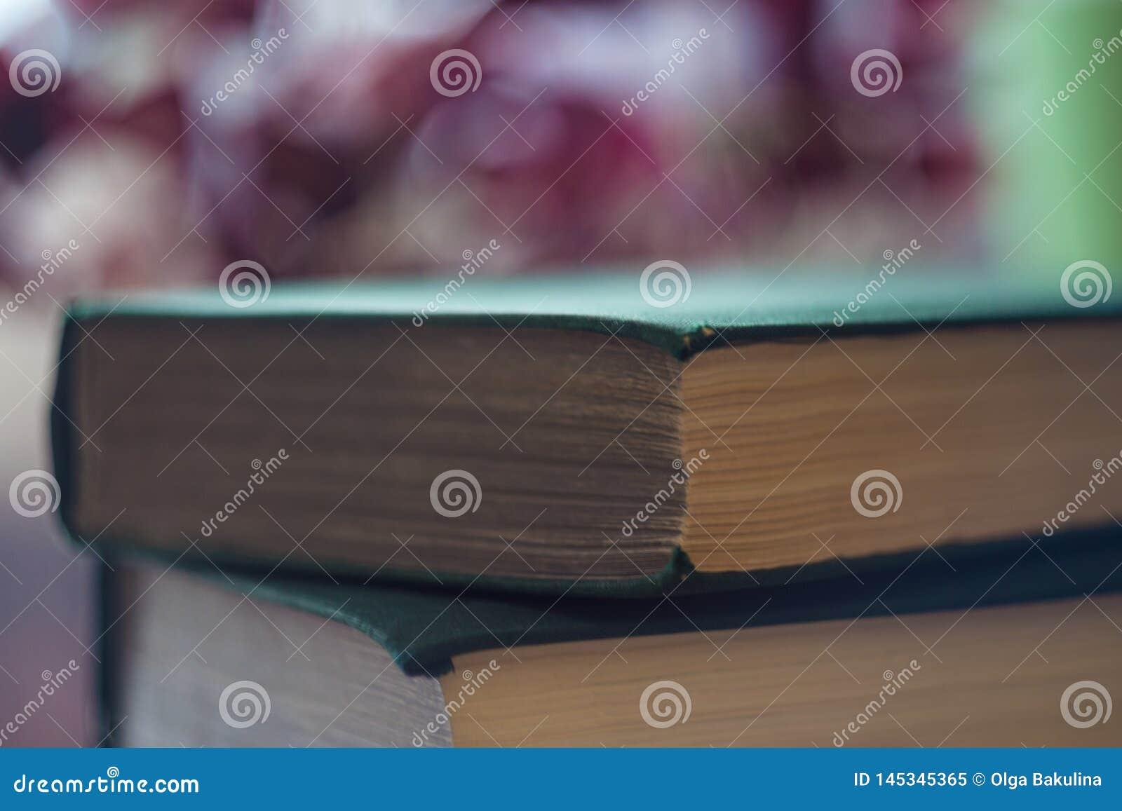 Pilha de livros verdes O conceito da leitura Close-up dos toms no fundo do inclina??o com reverbera??o Foco seletivo