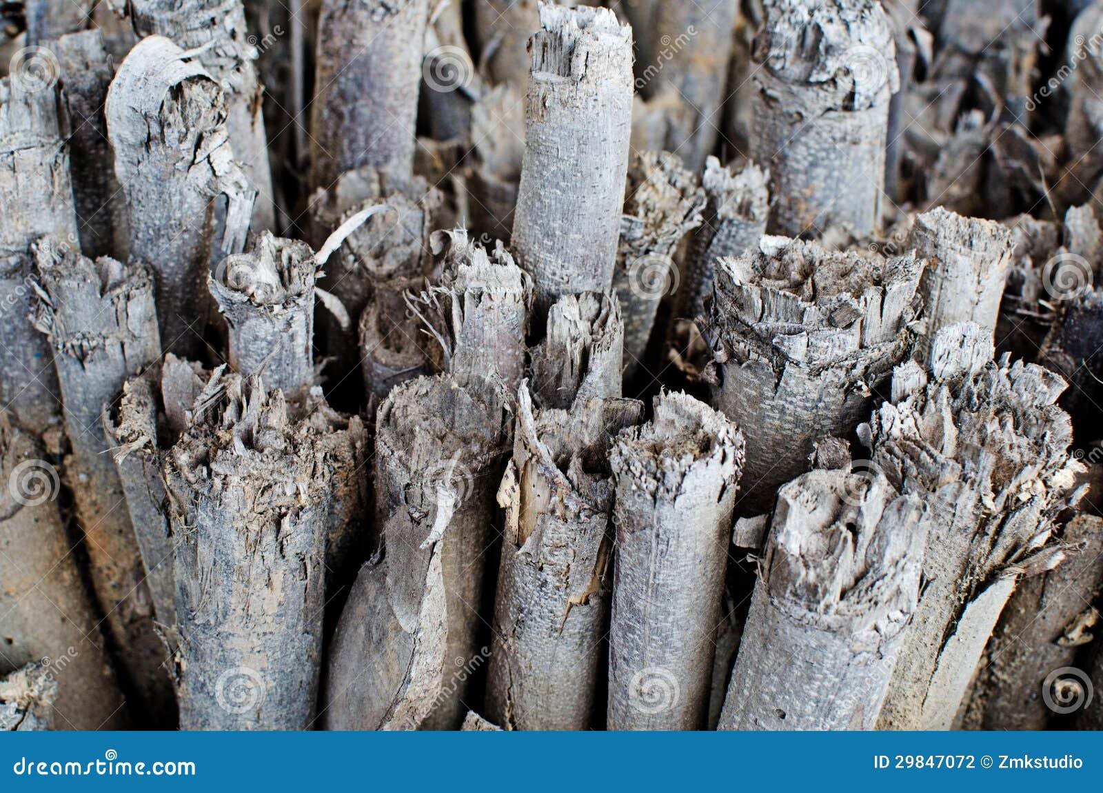 Pilha de madeiras da madeira serrada