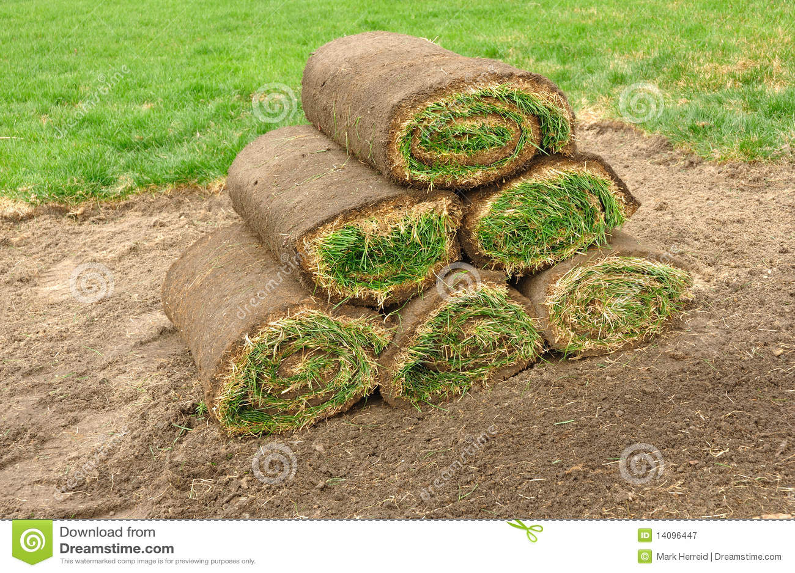 Pilha de Sod Rolls