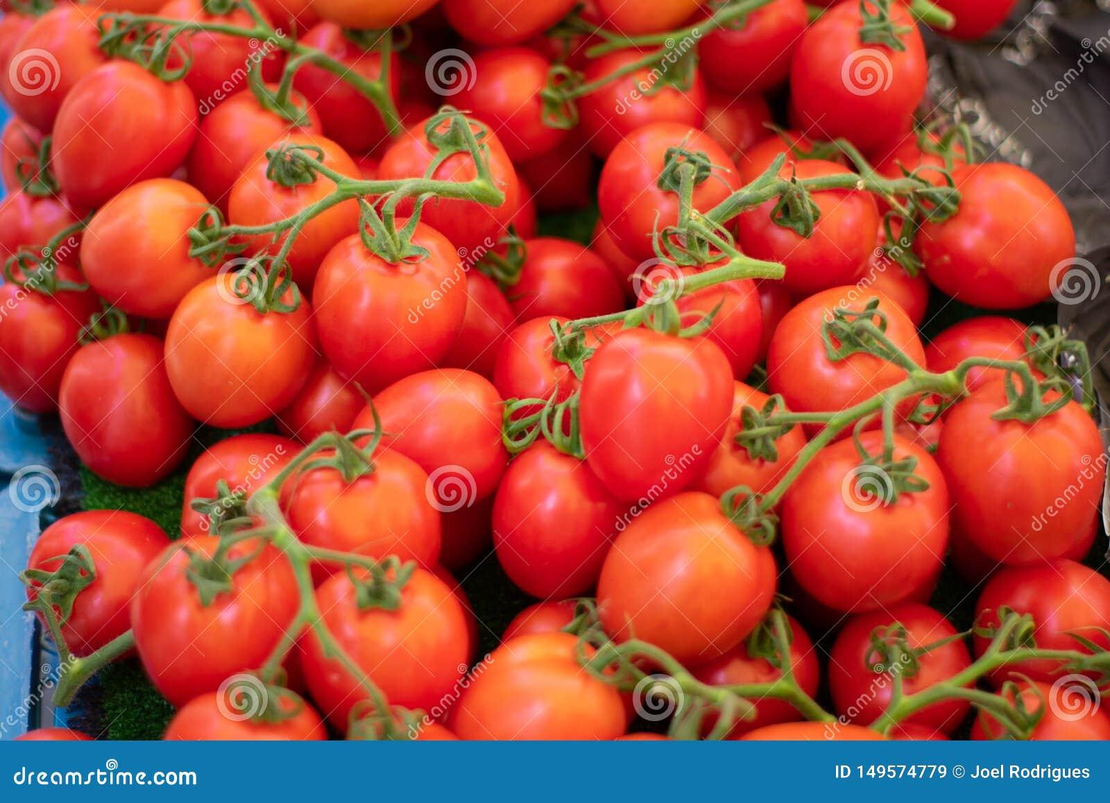 Pilha de tomates frescos da uva