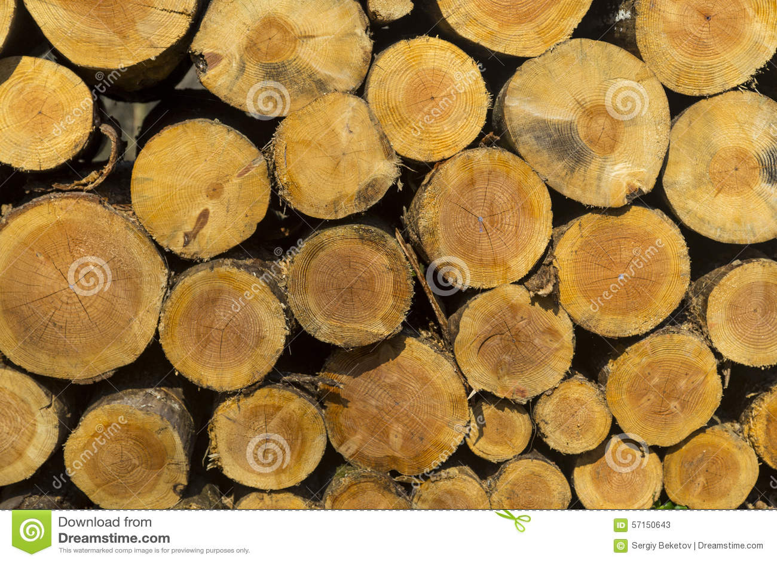 A pilha do tamanho diferente desbastou os logs de madeira preparados para o inverno