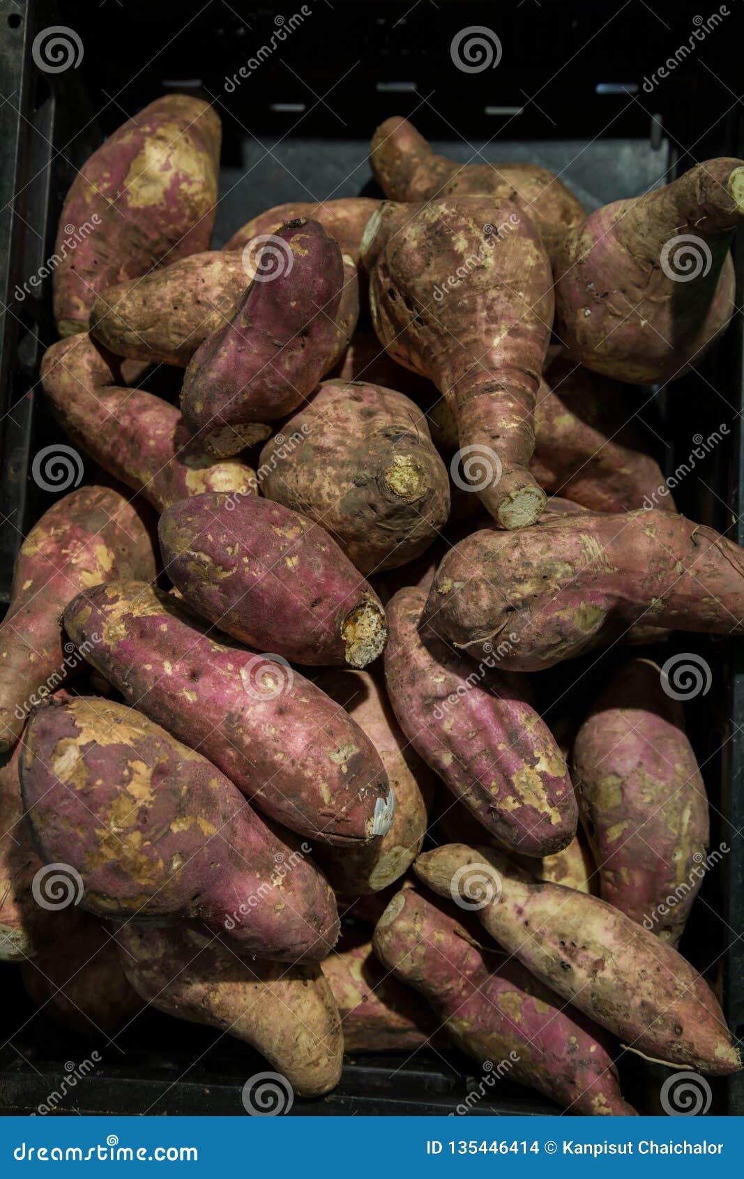 Pilha roxa fresca dos batatas doces Batata doce para a venda no mercado local fundo cofred do  batata doce , pilha do  batata doc