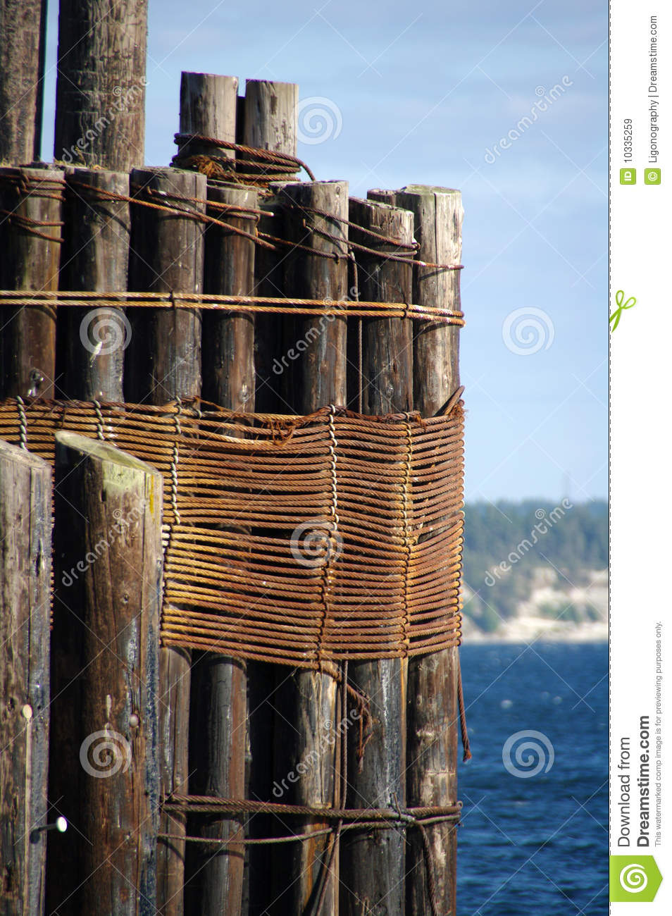 Pilings at the pier stock image image of harbor coast for Dock pilings cost