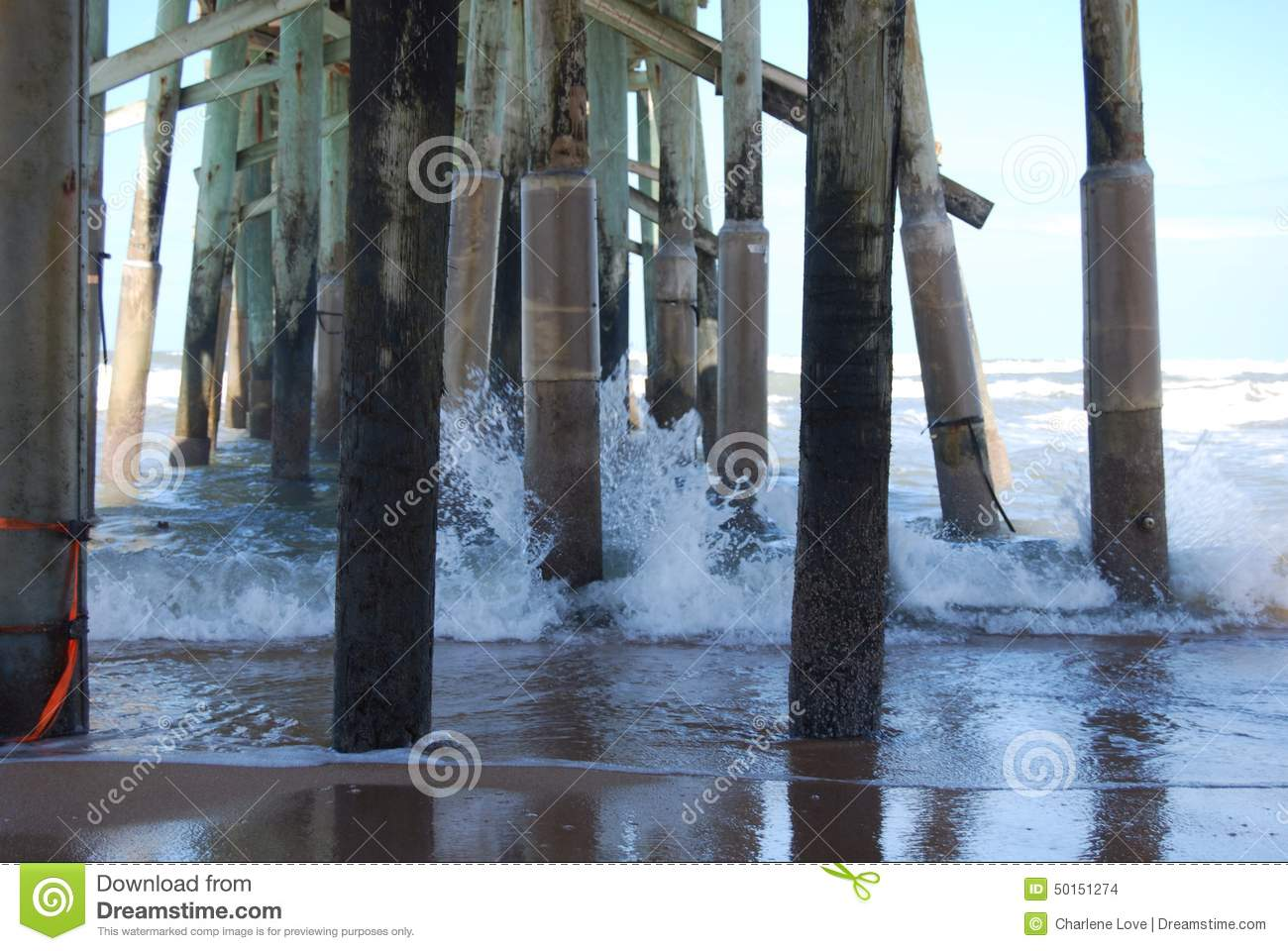 Pilings under the dock at the beach for Dock pilings cost