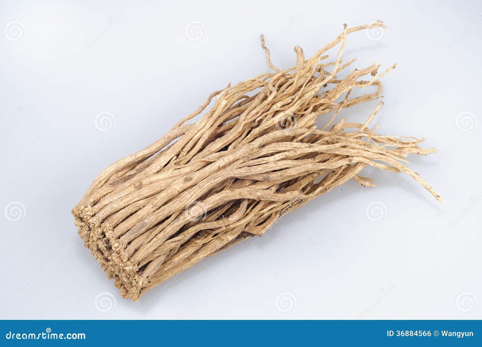 Download Pilosula Di Codonopsis (Franch.) Nannf. Fotografia Stock - Immagine di orientale, base: 36884566