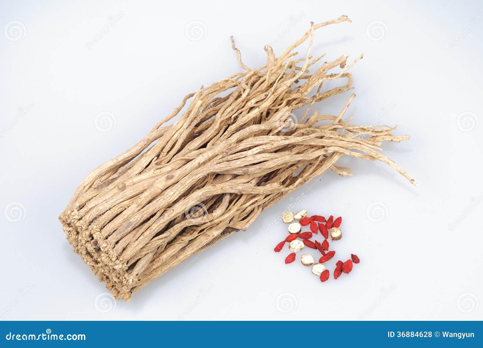 Download Pilosula Di Codonopsis (Franch.) Nannf. Fotografia Stock - Immagine di erba, cinese: 36884628