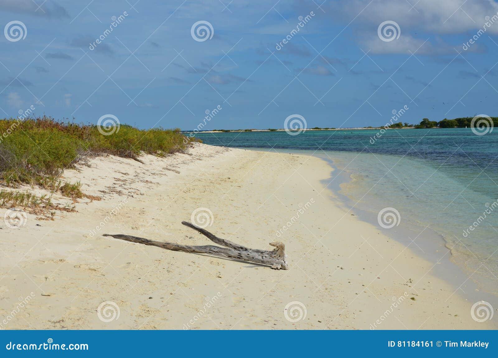 Pilot plaża