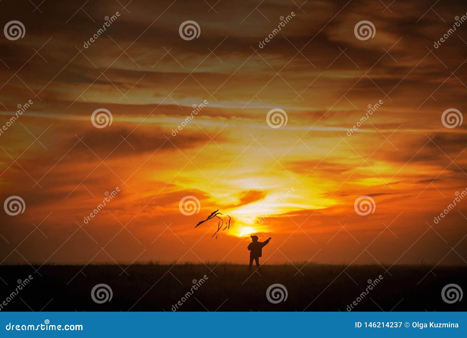 Piloter un cerf-volant Le gar?on court ? travers le champ avec un cerf-volant Silhouette d un enfant contre le ciel Coucher du so